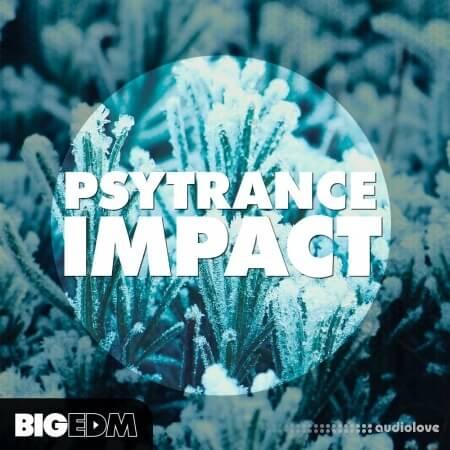 Big EDM Psytrance Impact