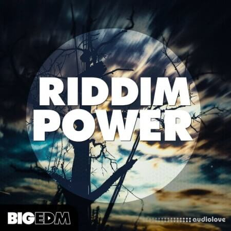Big EDM Riddim Power