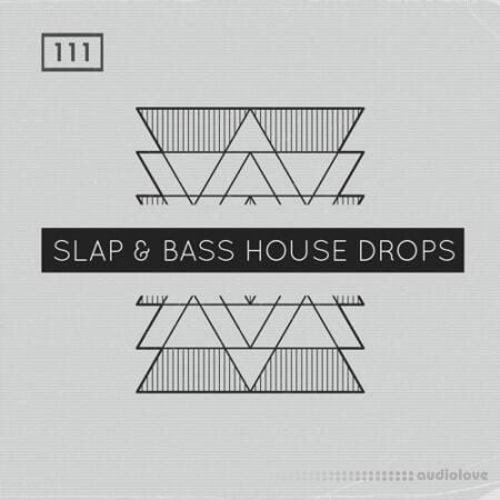 Bingoshakerz Slap and Bass House Drops
