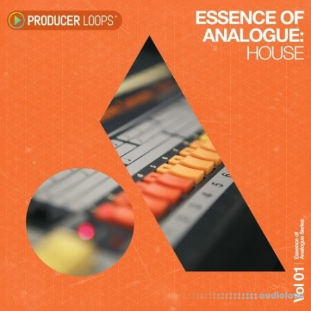 Producer Loops Essence of Analogue Vol.1 House